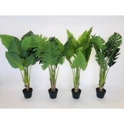 Plant in pot 90cm(318000070)