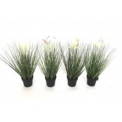 Plant gras in pot 46cm(317220070)