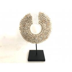 Papua shell 20cm(3384)