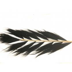 Deco gras pluim black (3440)